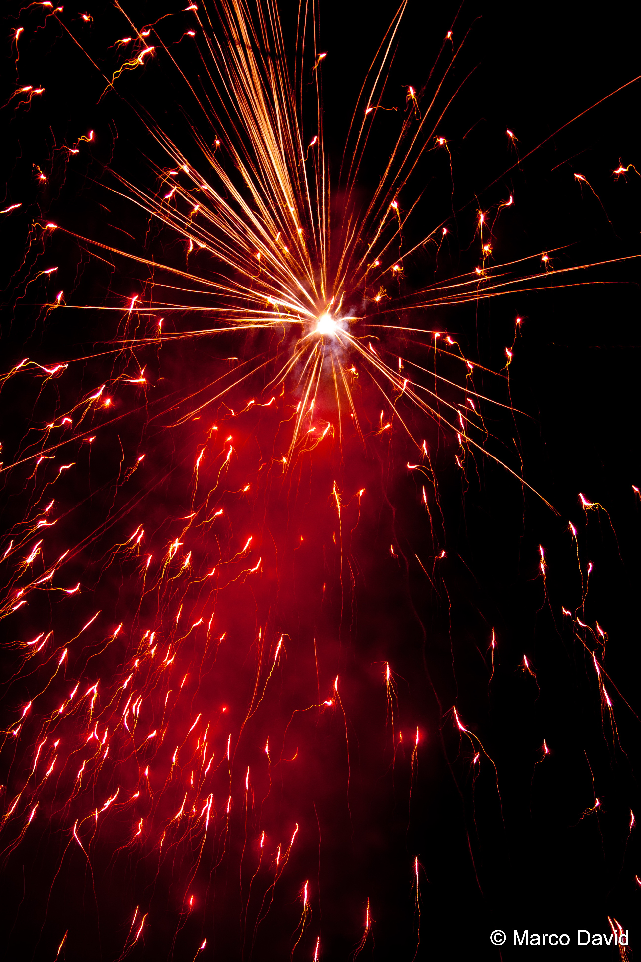 Gutes, neues Jahr euch allen!Happy new year to all of you ...